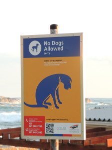 Sign on a beach in South Africa where no dogs are allowed.